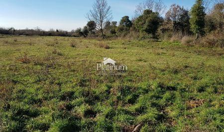 Istra, Ližnjan Šišan, neurbanizirano zemljište 495 m2 sa pristupnim putem