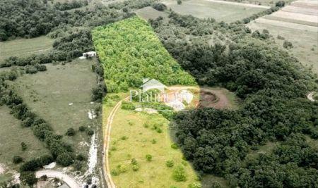 ISTRA, građevinsko i poljoprivredno 22.000m2