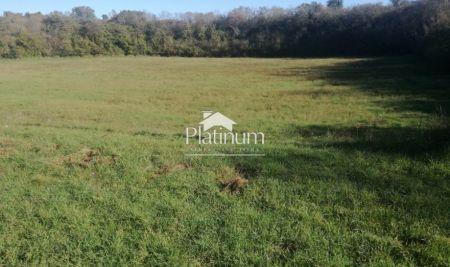 PULA - poljoprovredno zemljište 10800m2