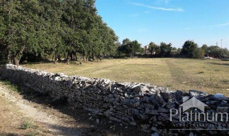 Istra, Rovinj, Kanfanar, stavbnih zemljišč, 814-910m2
