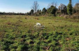 Istra, Ližnjan, Šišan, neurbanizirano zemljište 554 m2 sa pristupnim putem