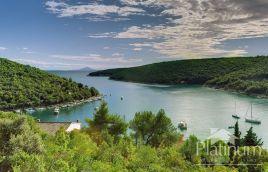 Istra, Marčana, Prodol, poljoprivredno zemljište 58811m2